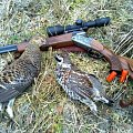 Grouse hunting in the late October morning (23.10.2014)