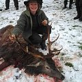 2 Days driven hunt with dogs pack ...successful lady