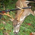A whitetail buck taken with a muzzleloader on our property in the Ozark mountains
