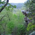 Where we turkey hunt in the Ozark mountains.....