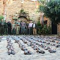 One day of leg partridge in Spain, over 400 birds