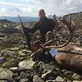 Trophy reindeers and red stag. Atlantic salmon fishing