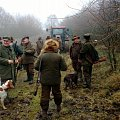 driven hunt in the Czech Republic on hares and pheasants