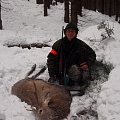 My Reddeer stag from driving hunt with my dog.